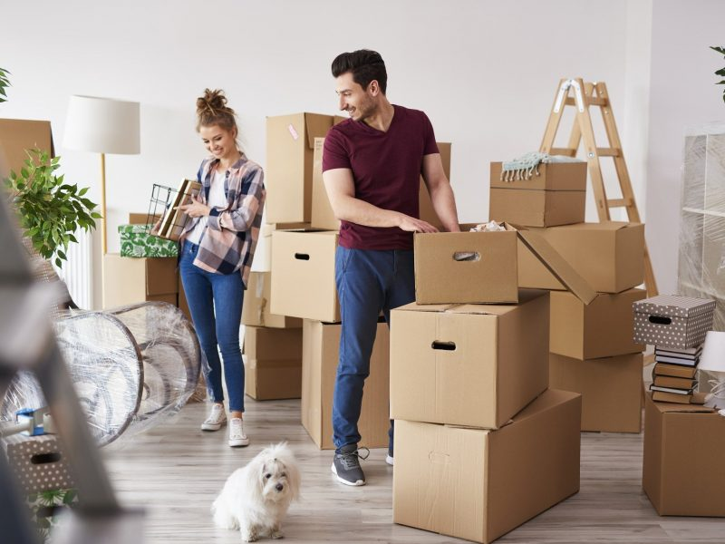 young couple with dog on moving day